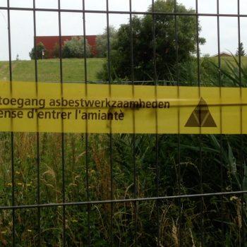 Thumb-asbest-nologo.jpg